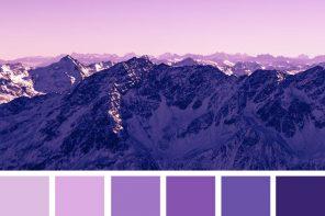 Lilac and Indigo : Pretty lilac and Indigo color scheme ,lavender color combinations #indigo #lilac #color #colorpalette #colors #colorscheme