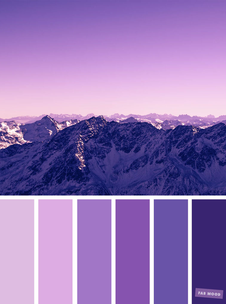 Lilac + Indigo Color Inspiration