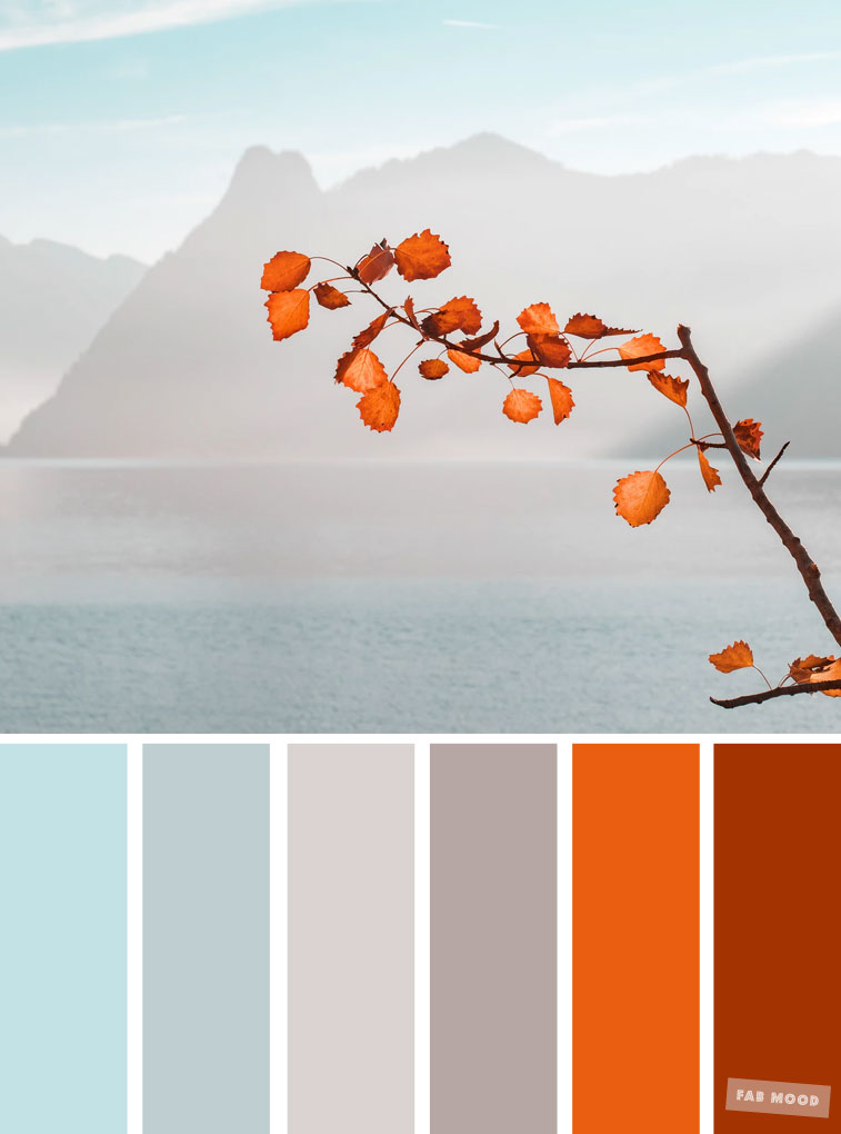 Burnt orange light blue and grey color palette