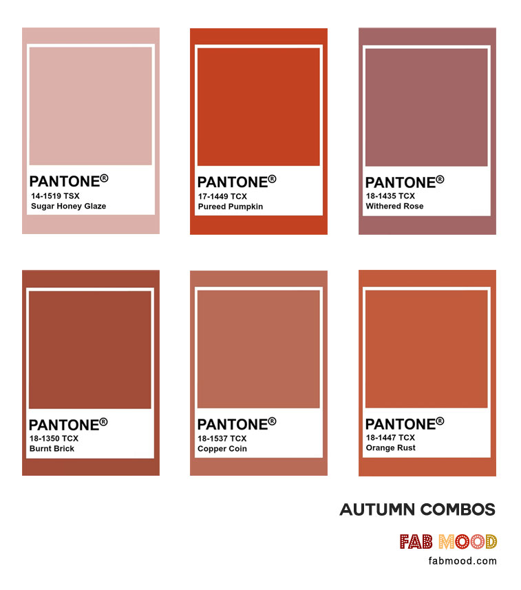 Find out what color looks best with rust? Beautiful color palette rust color combinations, included rust color names, dark rust color #pantone #color #fall #autumn
