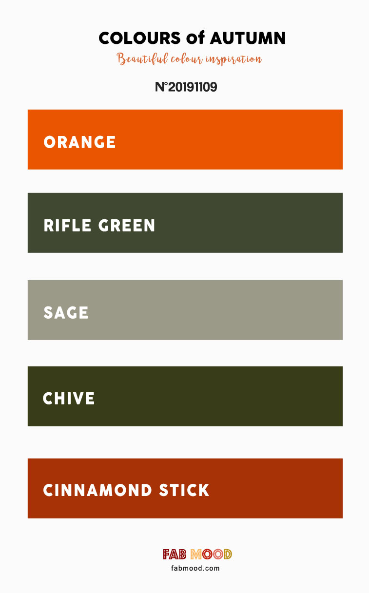 orange and sage color, orange sage wedding color, sage rust wedding colors, wedding colors , color palette