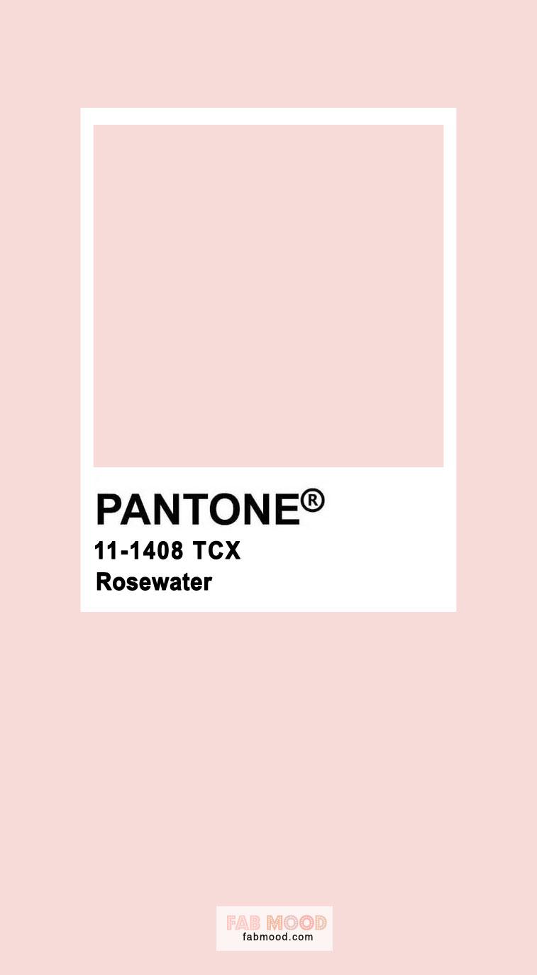 rosewater pantone color, pink color, pantone color, pantone pink, pink #pantone #rosewater #pinkpantone
