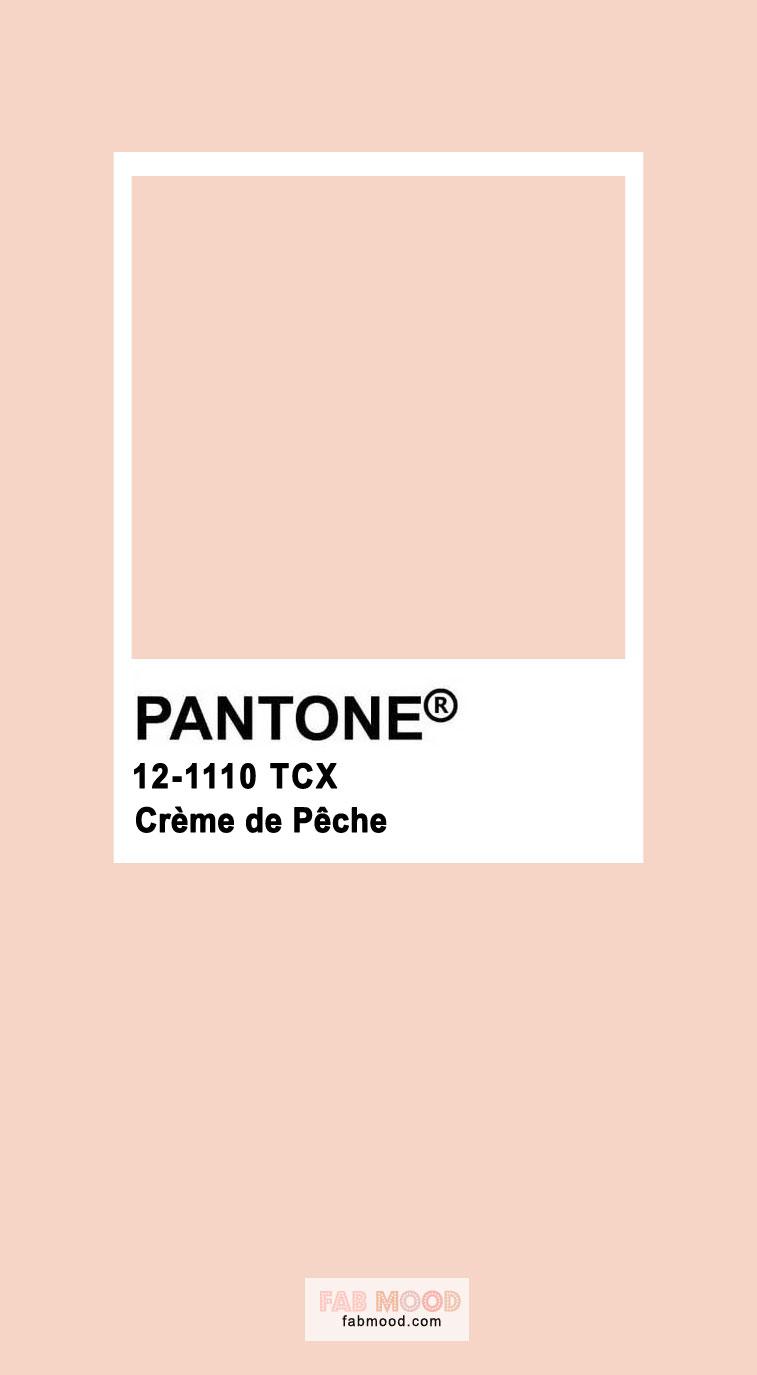 creme de peche, pink color, pantone color, pantone pink, pink #pantone  #pinkpantone
