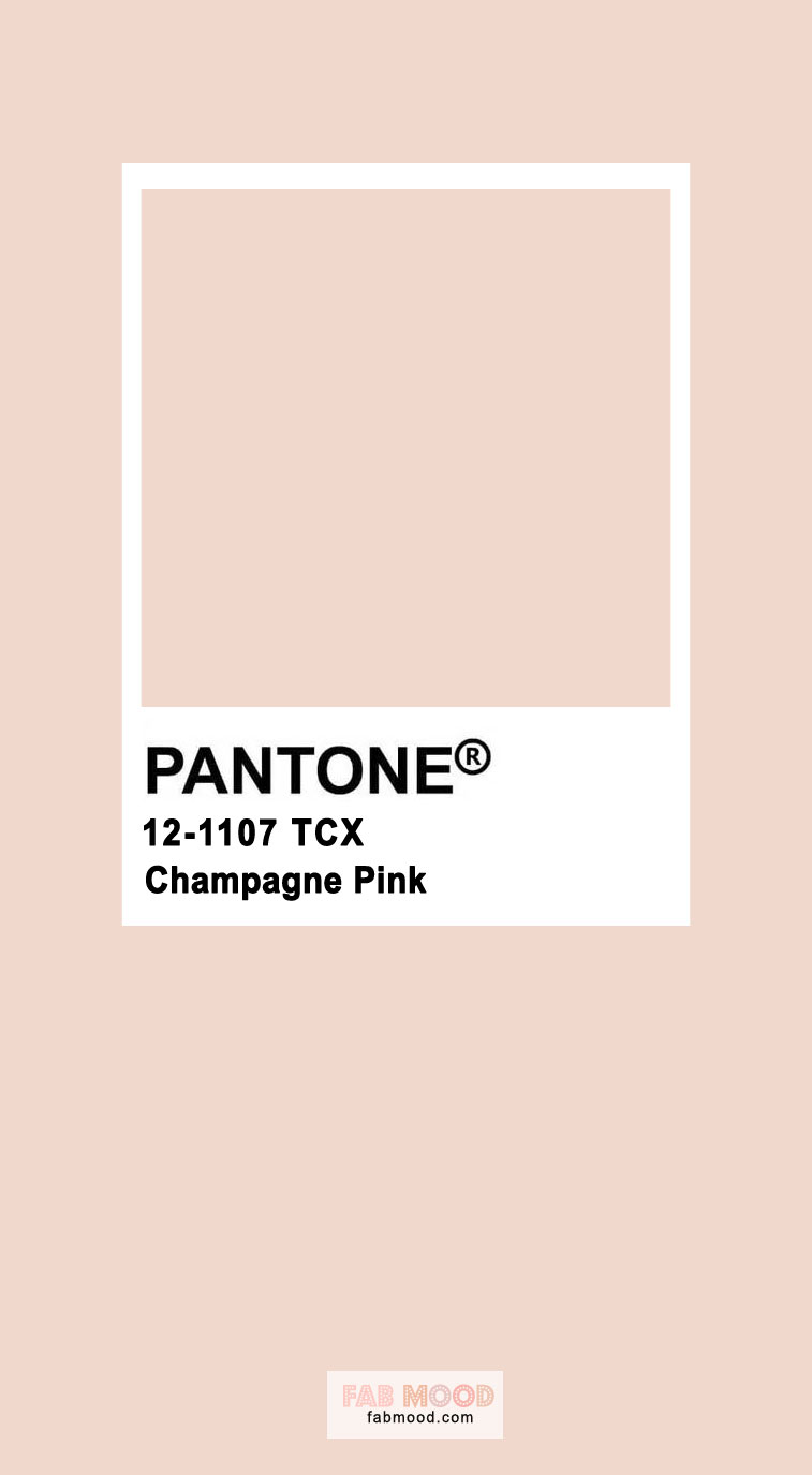 champagne pink, pink color, pantone color, pantone pink, pink #pantone #champagne #pinkpantone