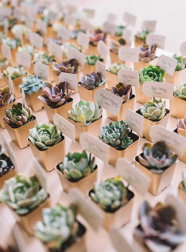 spring wedding favors , succulent wedding favors, green wedding ideas #weddingideas #springwedding