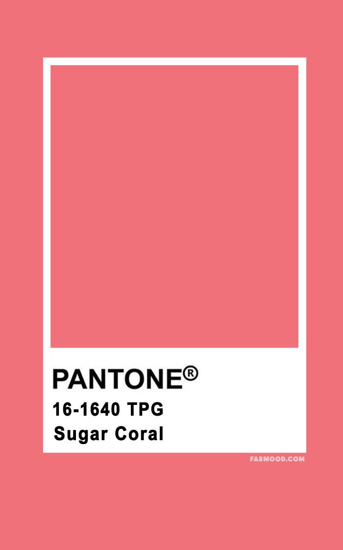 pantone color palette, pantone coral, sugar coral, pantone summer, summer color #pantonecolor #colorpalette #fabmood