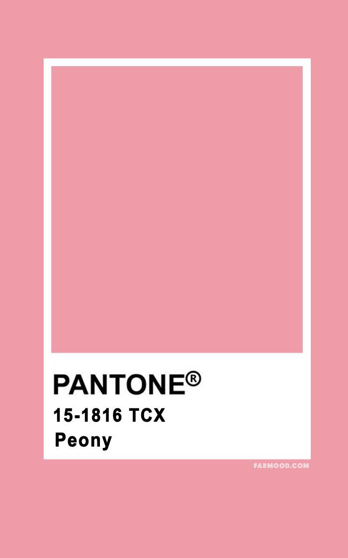 Pantone Peony 15-1816