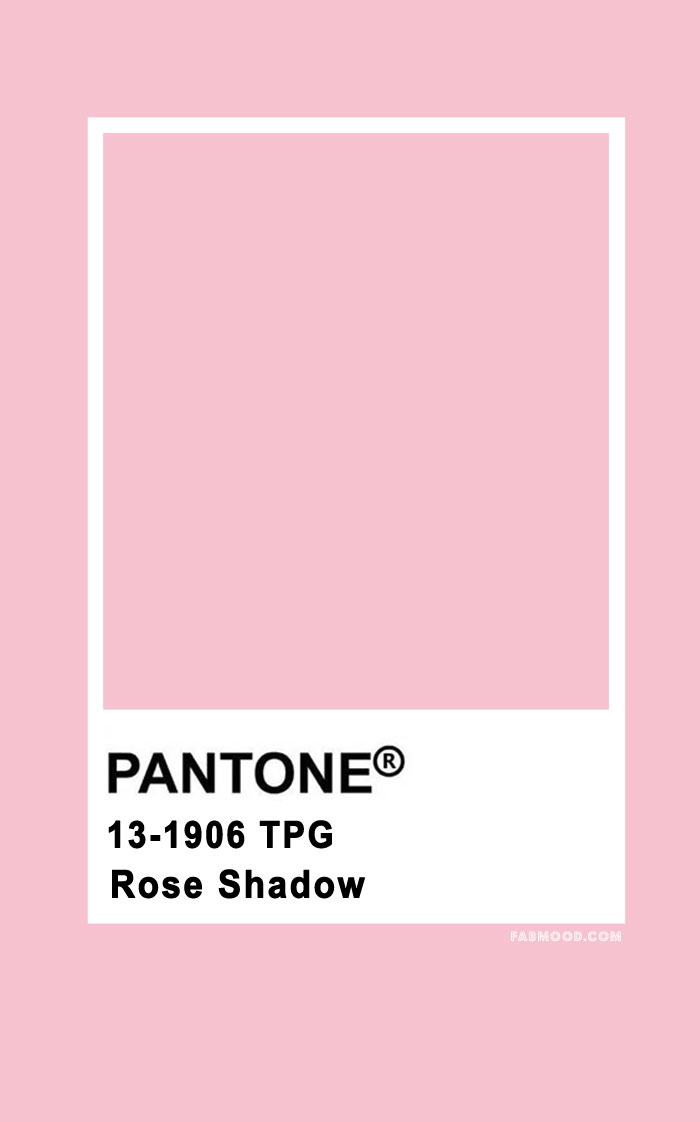 Pantone Rose Shadow 13-1906