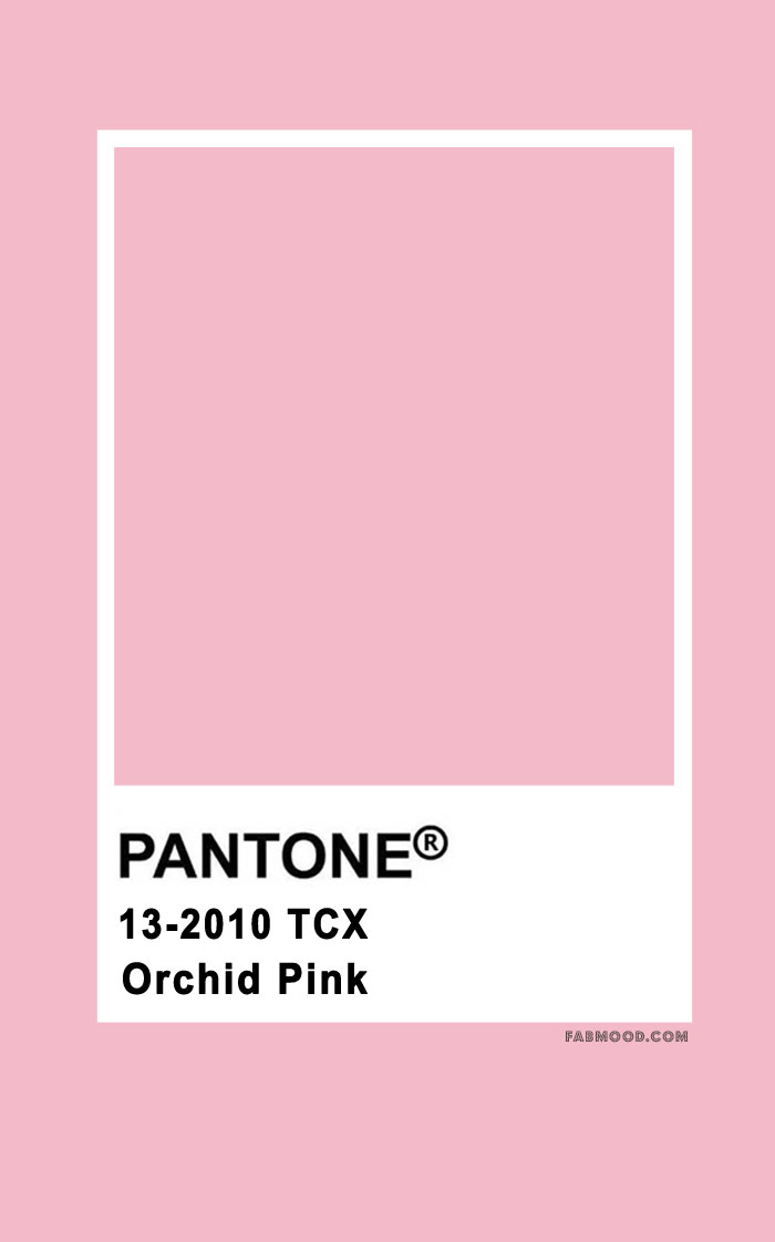 Pantone Orchid Pink 13-2010