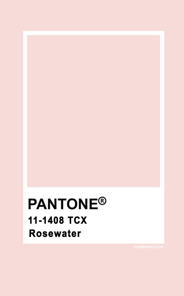 Pantone Rosewater 11-1408