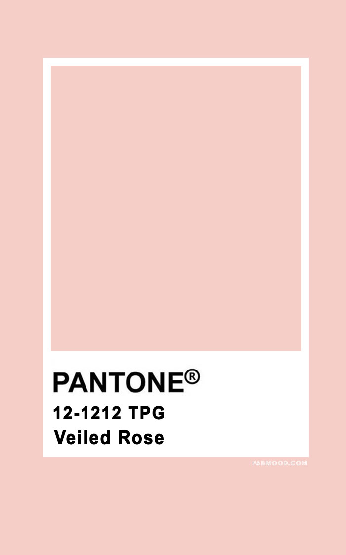 Pantone Veiled Rose 12-1212