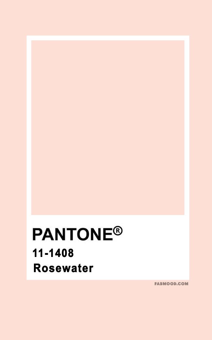Pantone Roeswater 11-1408