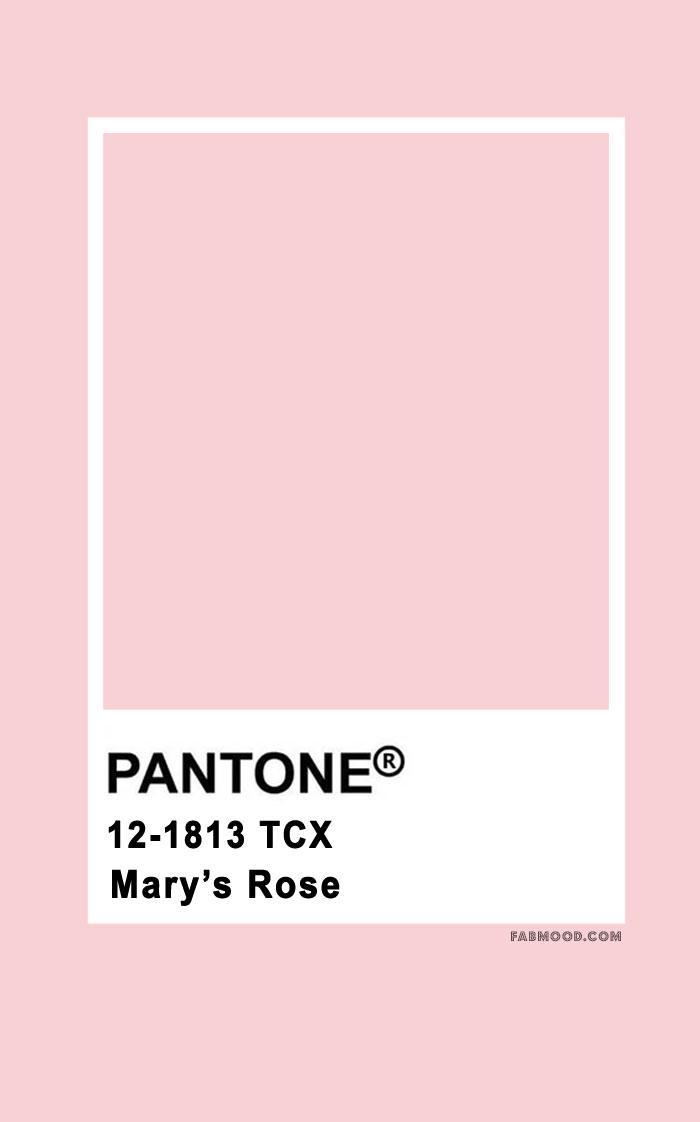 Pantone Mary's Rose 12-1813