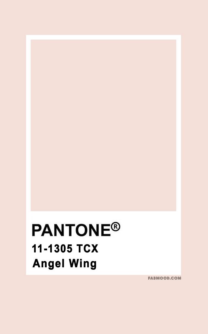 pantone color , pantone color 2020, pantone color chart , pantone color of the year, pantone color chart 2019, pantone color names, pantone color chart 2020, pantone pink, pantone angel wing #pantone