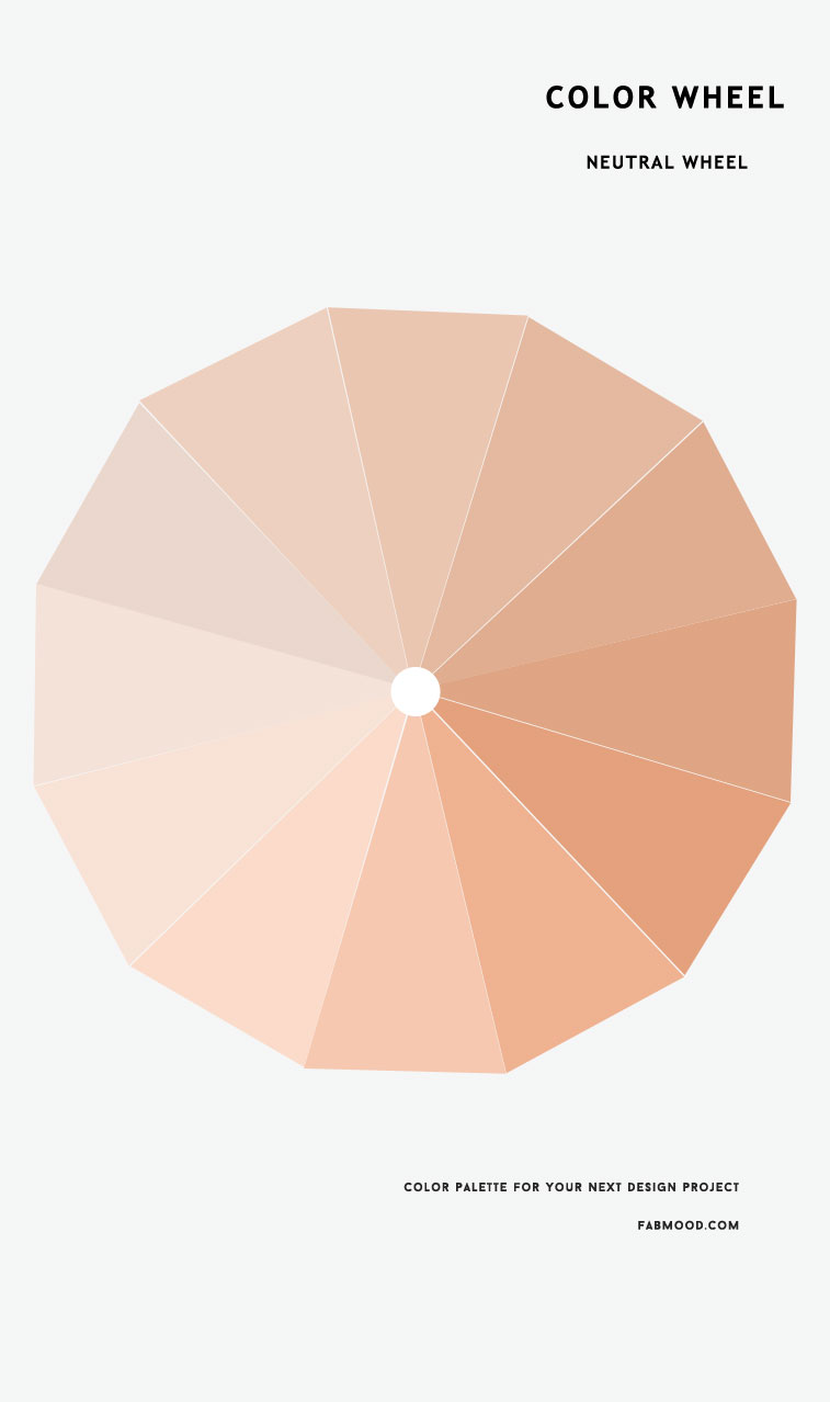 color, color wheel , color wheel ideas, color wheel palette, color inspiration, neutral, neutral color wheel