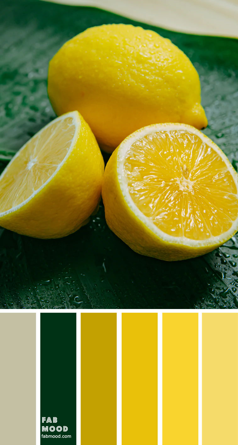 Color Inspiration : Green & Yellow Lemon – Color Palette #36
