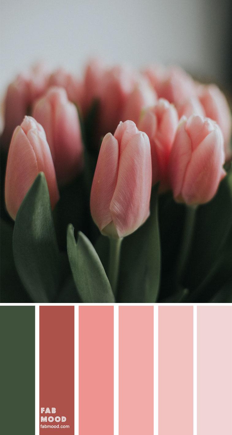 color inspiration, color palette, mood board, color palette , green and pink #green #pink #salmonpink #colorpalette #color