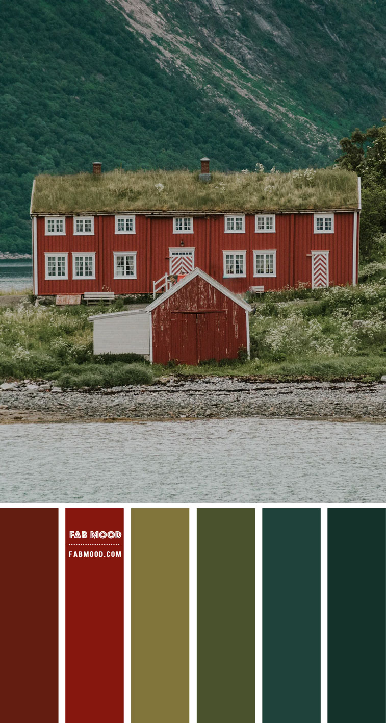 blood orange color scheme, blood orange, blood orange and green hue, blood orange and green color combination, color palette from image, red house color inspiration