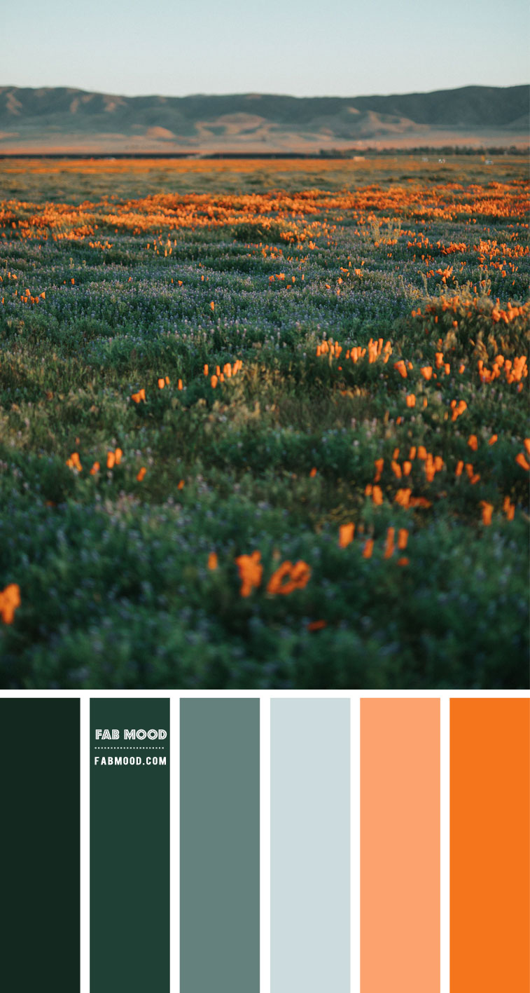 Blue , green and orange color scheme – Color Palette #57