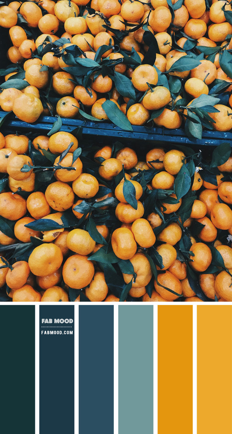 Midnight Green, Slate blue and Mustard Color Scheme  – Color Palette #55
