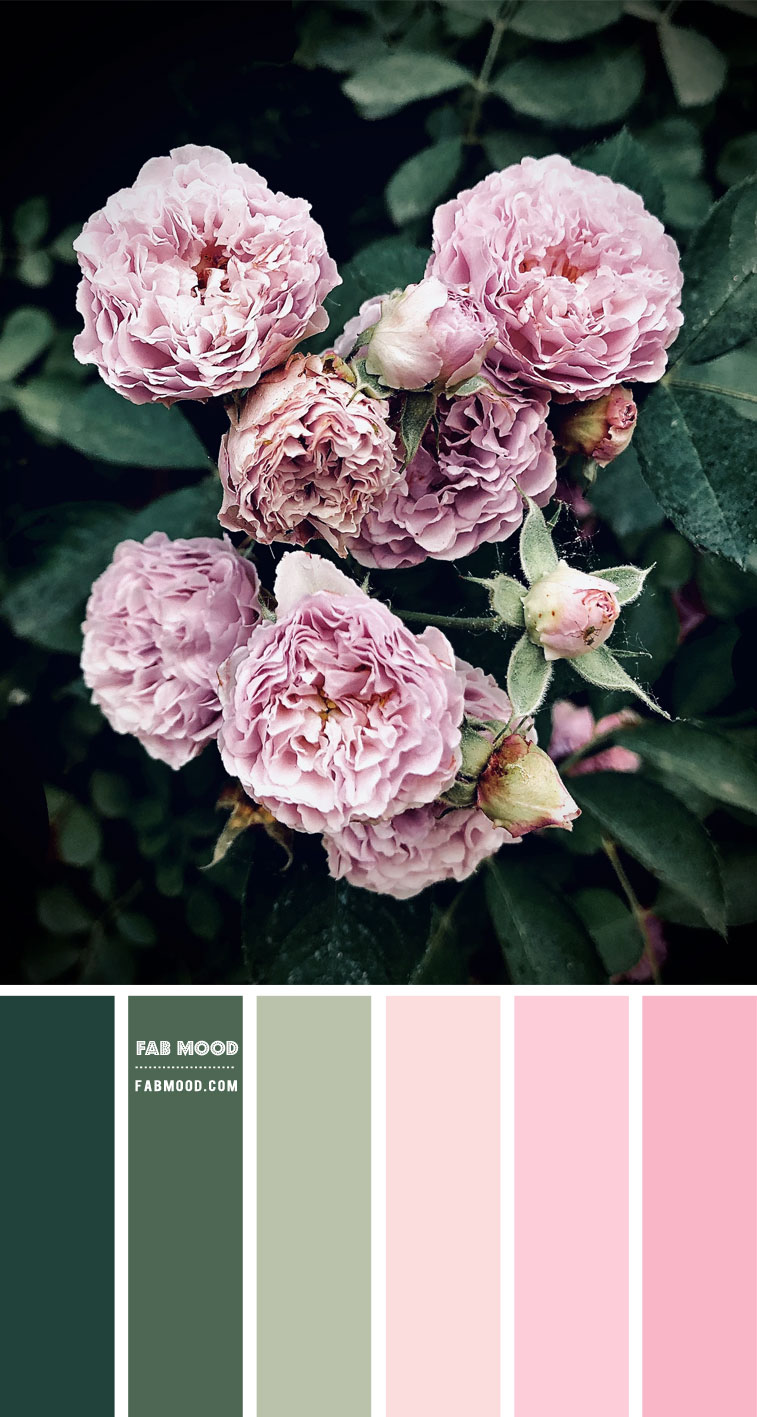 green and pink color scheme, green and pink color palette, blush and pink color scheme, pink color combo, color scheme