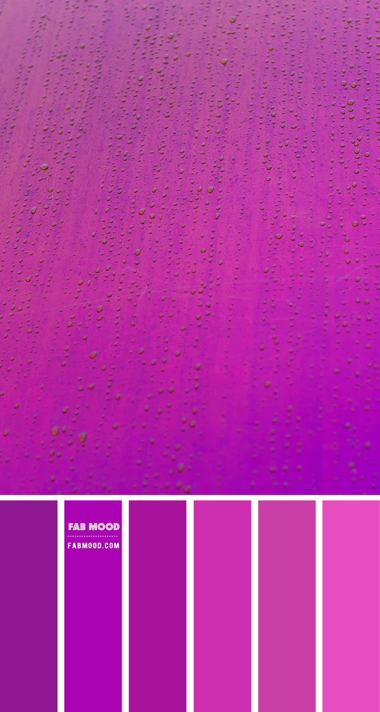 Magenta and purple color scheme – Color Palette #47