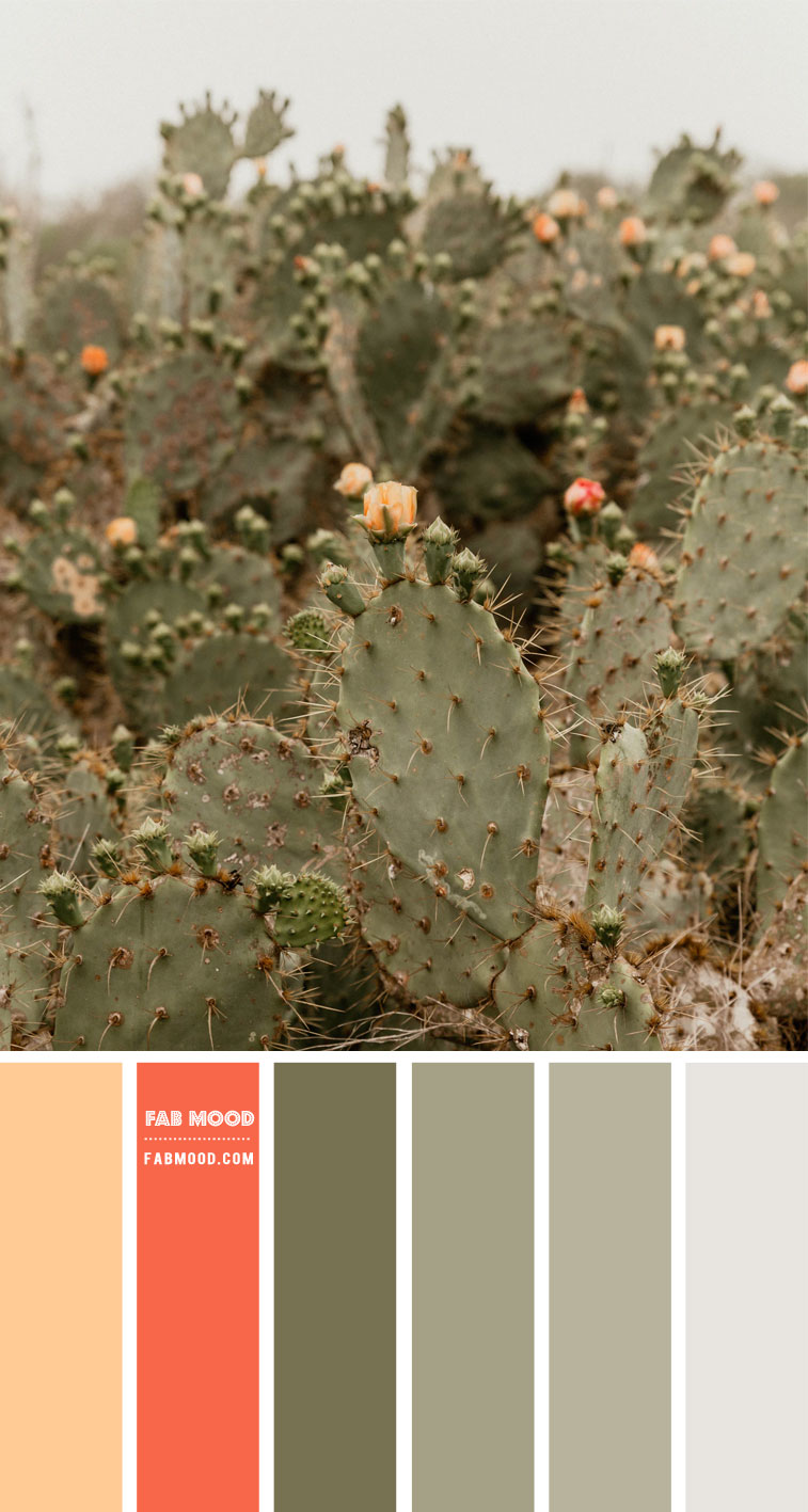 Sage and Salmon Pink Color Palette – Color Palette #45