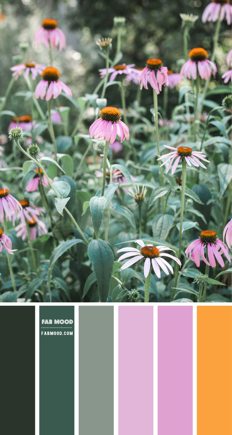 Green and Pink Colour Scheme – Colour Palette #79