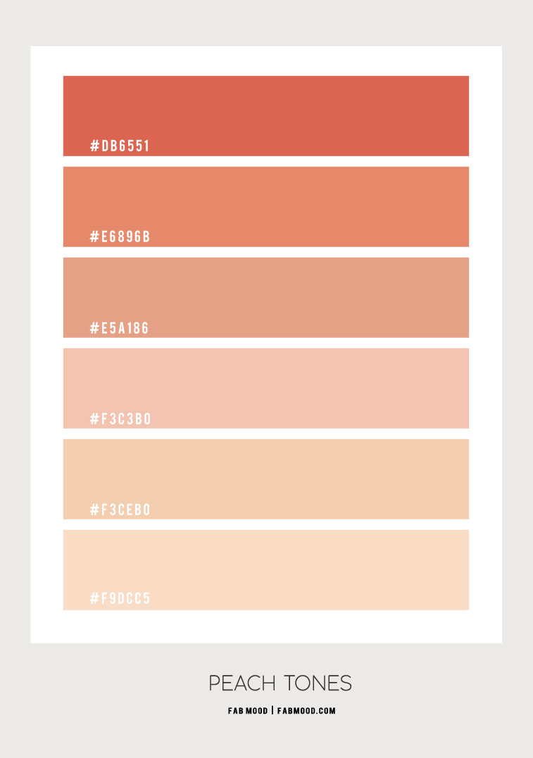 peach tones color scheme, peach toned color palette #peach #colorscheme #colorpalette peach color combo, blush and peach , neutral color palette