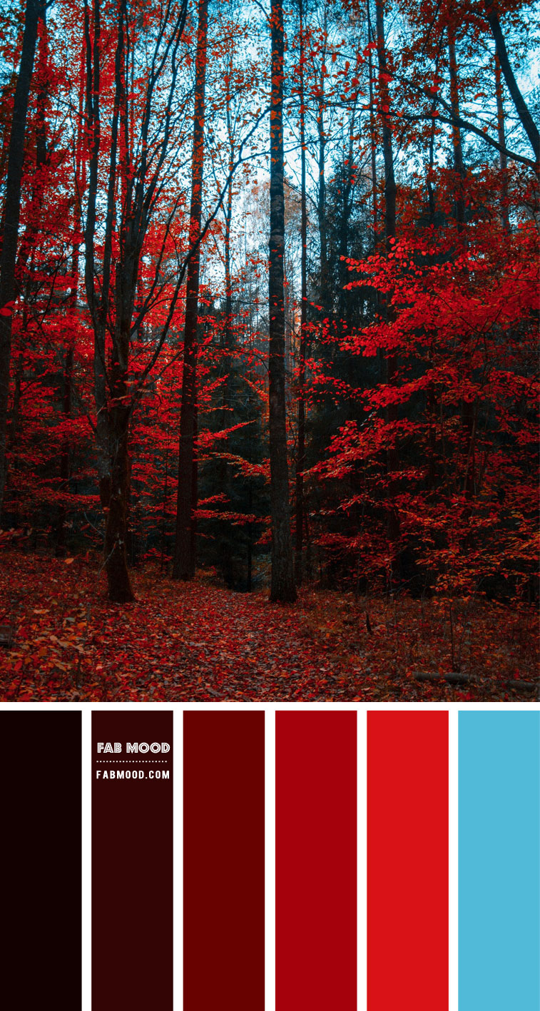 Red Autumn Colour Scheme – Colour Palette #78