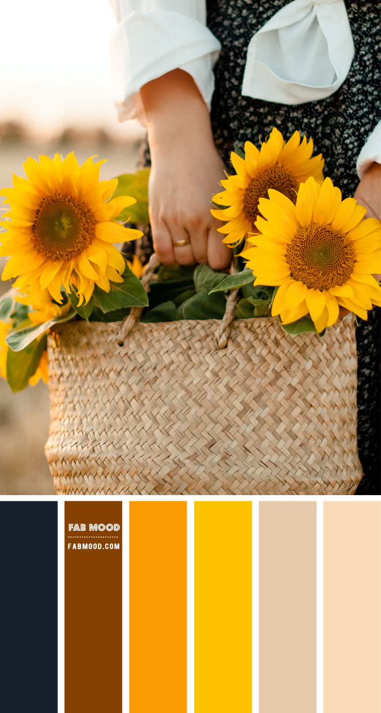 navy blue and yellow color scheme, navy blue and orange color scheme, dark blue and yellow sunflower, colour scheme , color combo, color palette, dark blue and orange , intense colors, summer color ideas