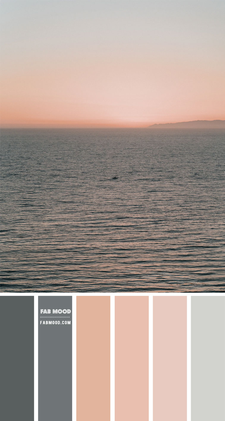Grey and Peach Colour Scheme – Colour Palette #101