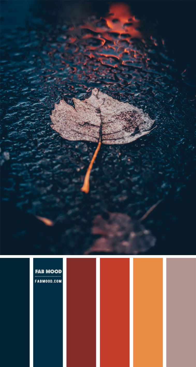 Chestnut and Dark Blue Colour Scheme– Colour Palette #102