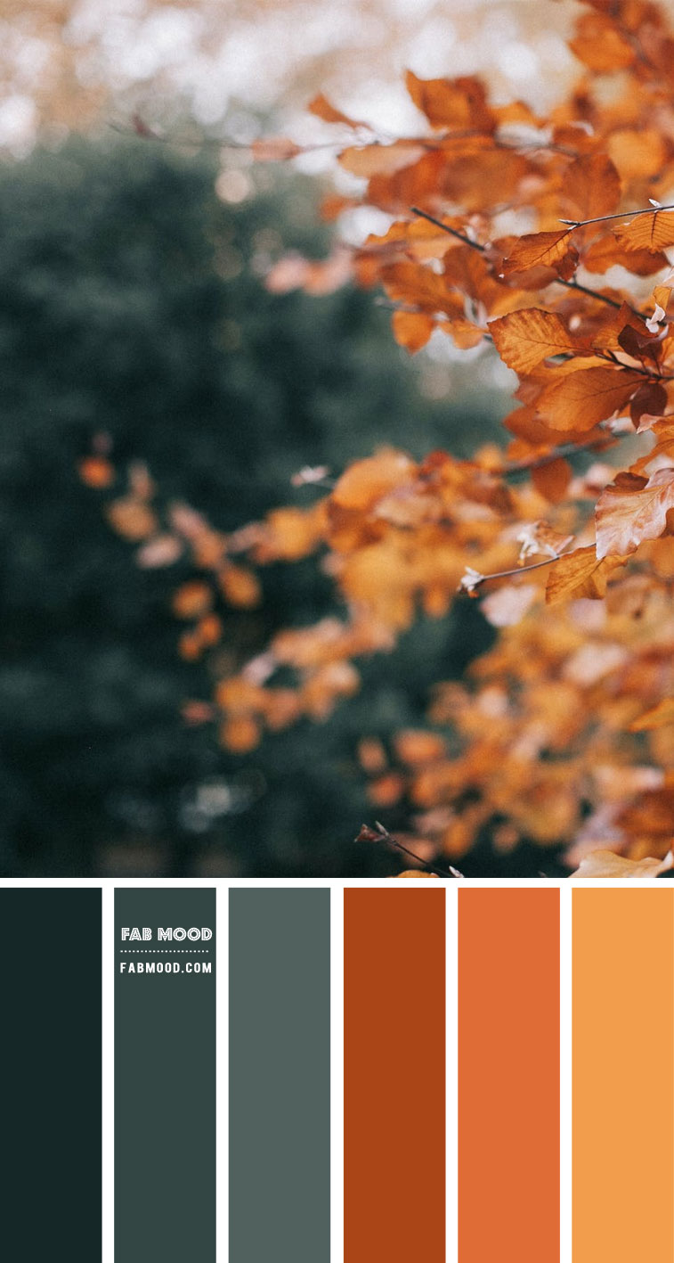Brown, Green and Orange Colour Scheme – #ColourPalette 110