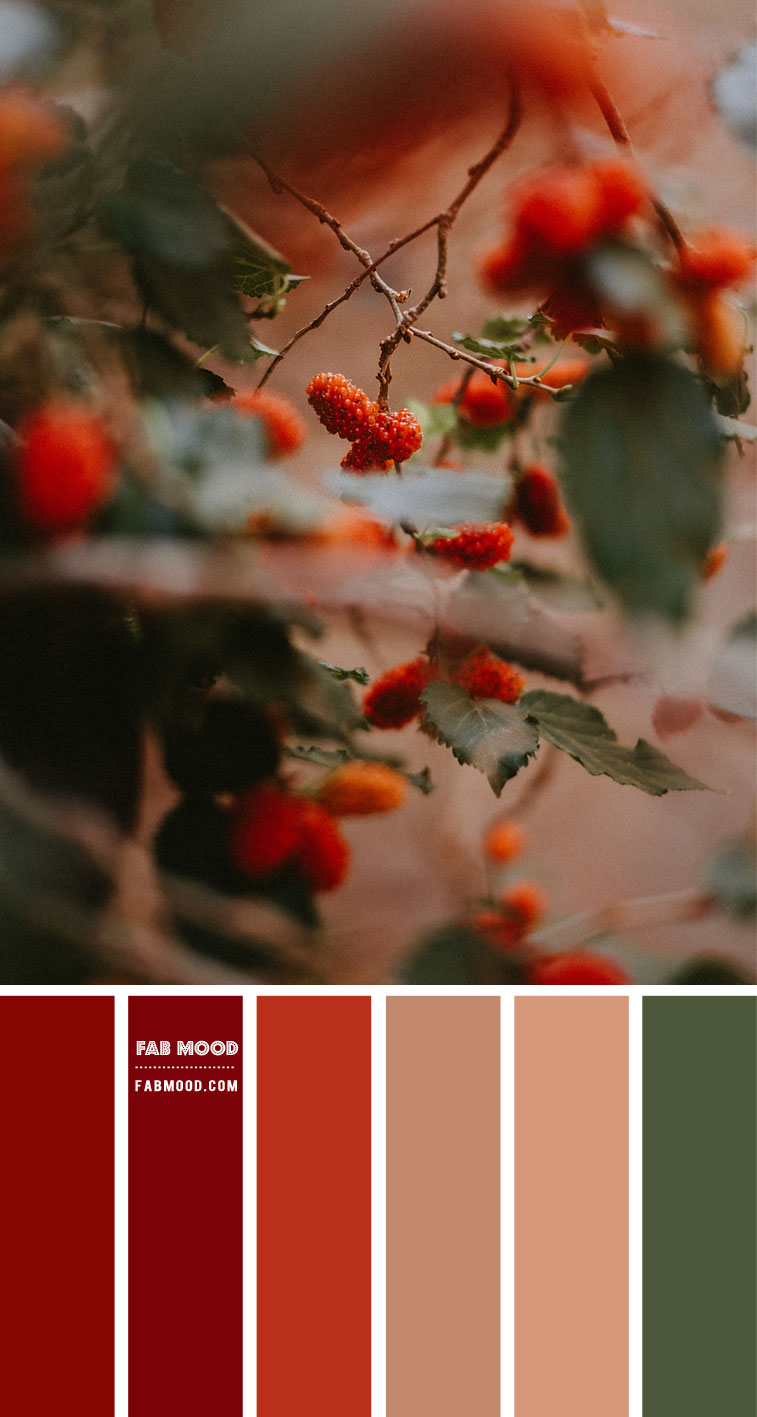 Orange Red Berries – #Colour Palette 112