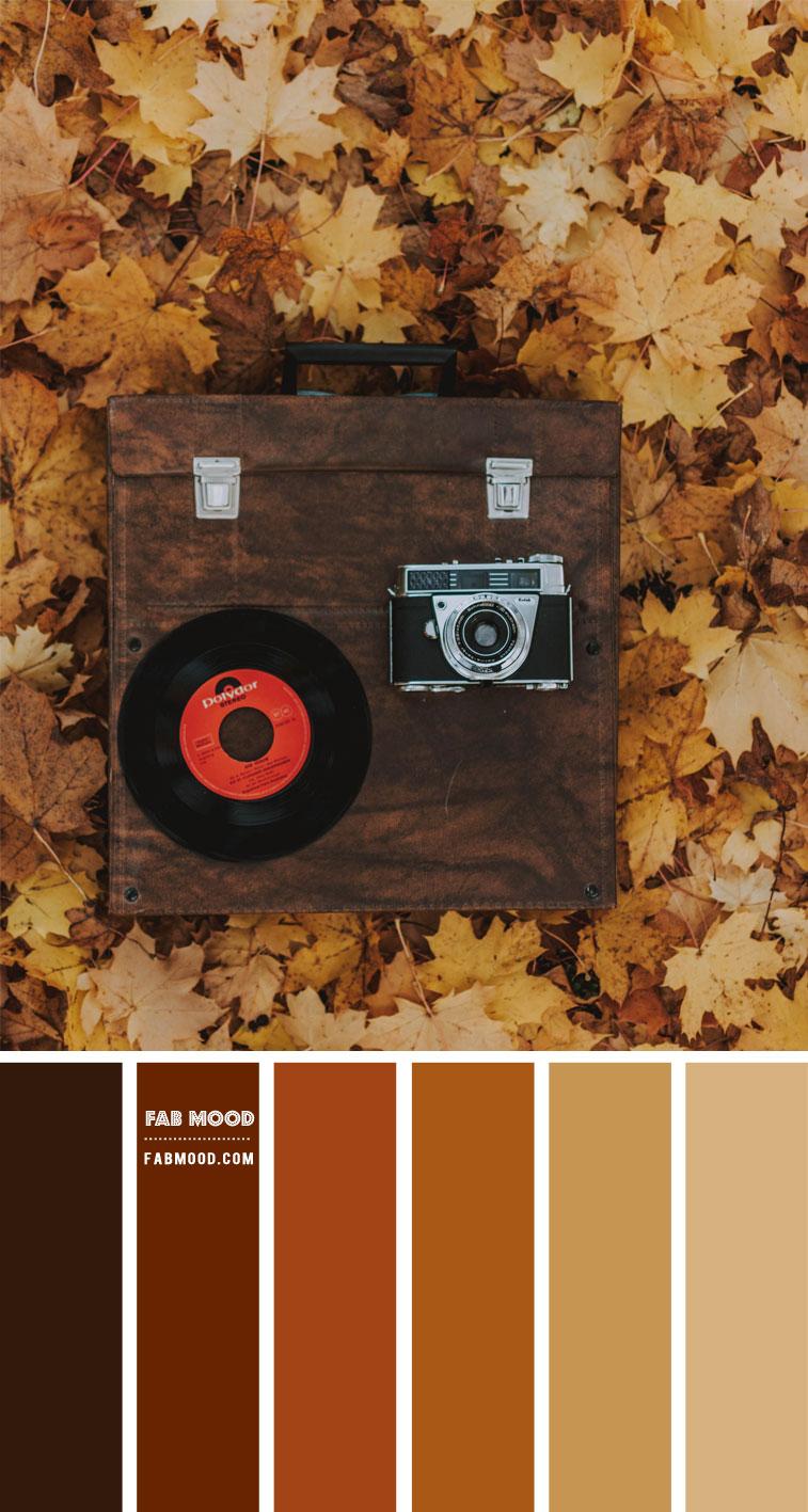 fall color palette, fall color ideas, fall color combo, brown color scheme, autumn colour combo, shades of autumn colour #autumn #colorpalette