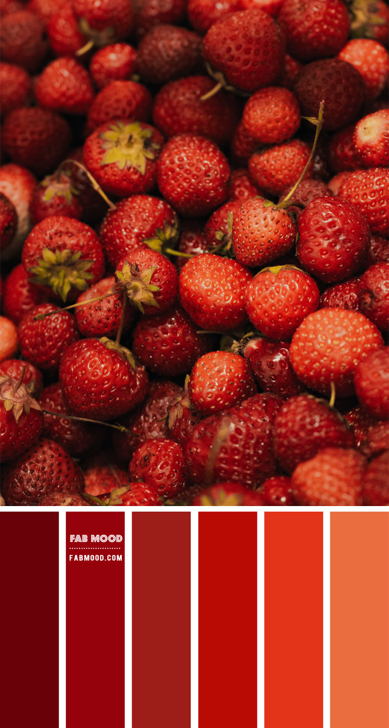 red strawberry, shades of red, shades of red color , shades of red color combo, red color combo, red color palette , autumn color palette