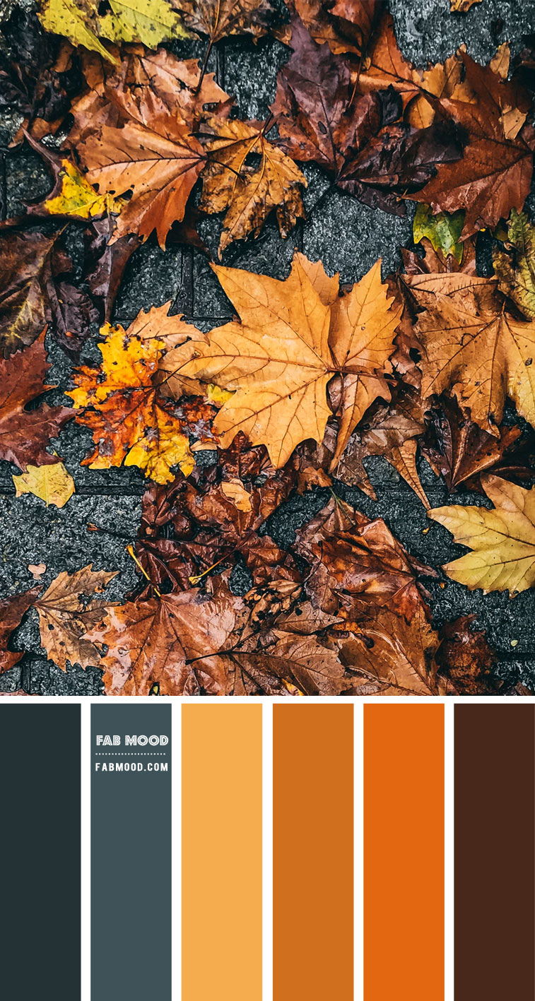 Steel and Autumn Leaf Colour Scheme – #Colour Palette 117