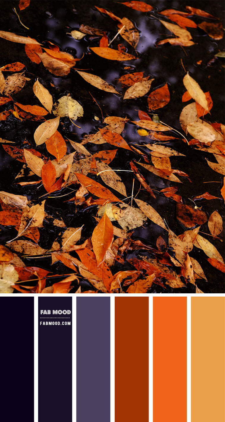 Autumn Colour Combo – #Colour Palette 119