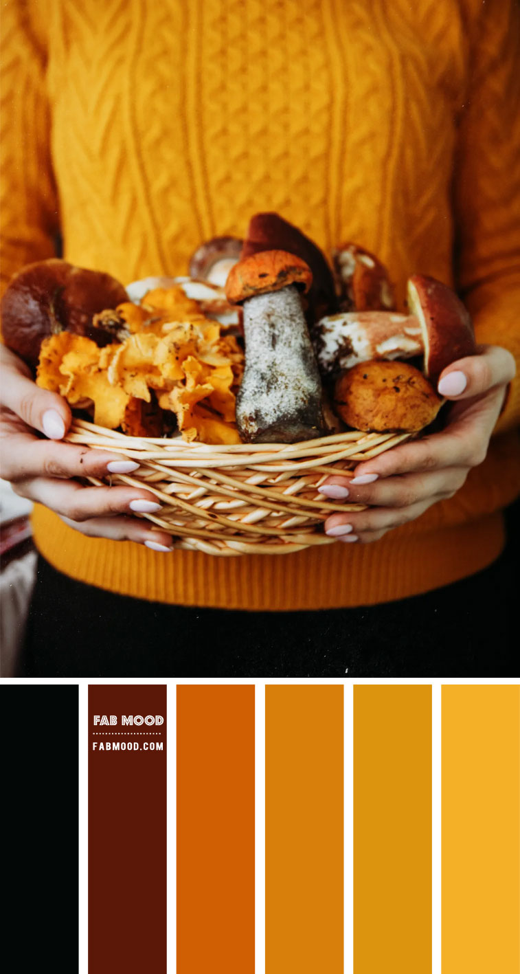 Amber and Black Color Combo – #Colour Palette 126