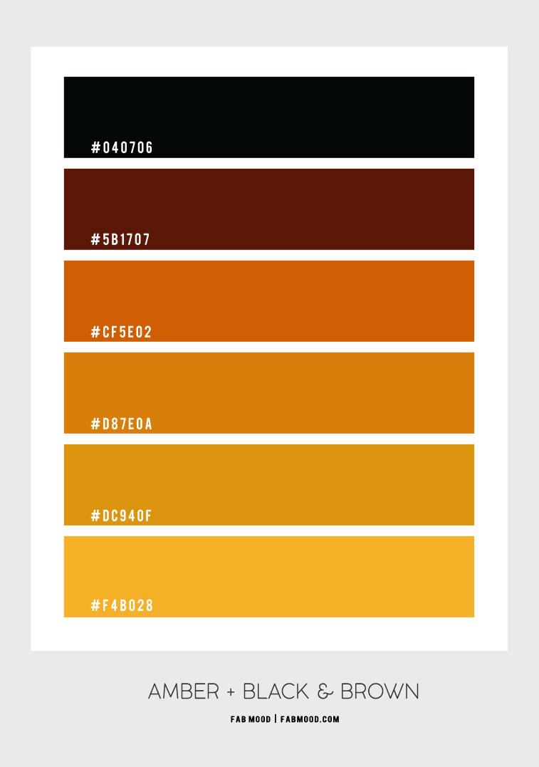 color hex, amber color hex, fall color hex, amber and black color scheme, amber color combo, mustard color combo, fall color palette, fall color scheme