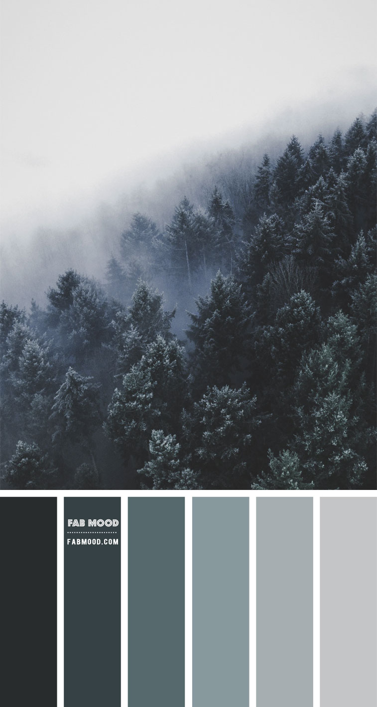 Winter morning mist – #Colour Palette 127