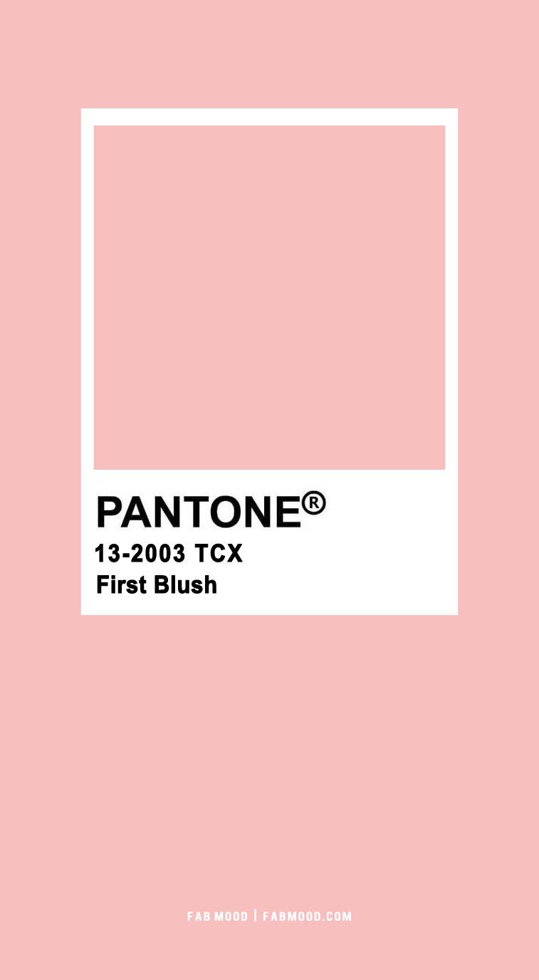 pink pantone, first blush pink pantone, pantone color , pantone pink
