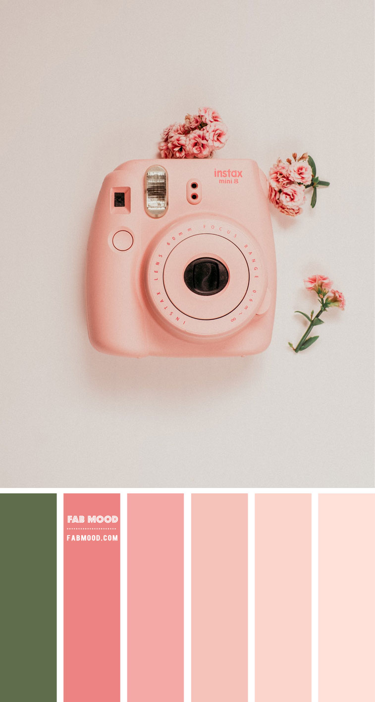 Peach and Salmon Pink Colour Scheme – Colour Palette 133