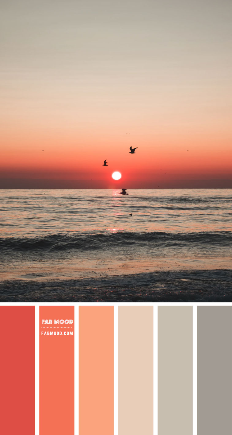 Coral and Sage Colour Scheme – Colour Palette 134