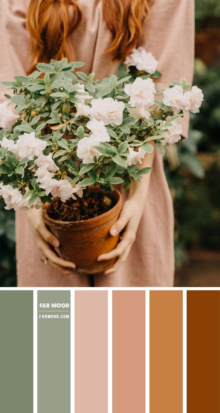 Brown and Sage Colour Combo – Colour Palette 137