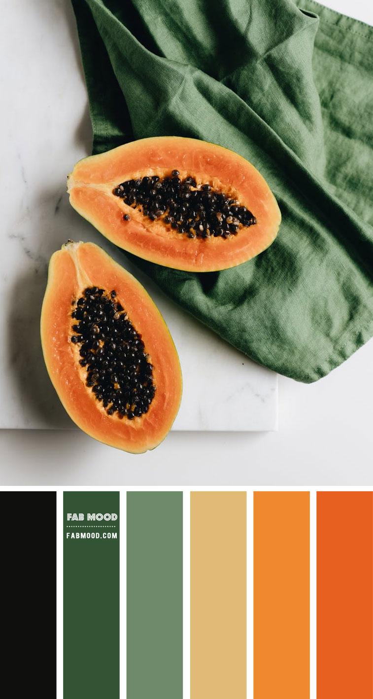 Green and Orange Papaya Color Inspiration – Colour Palette 140