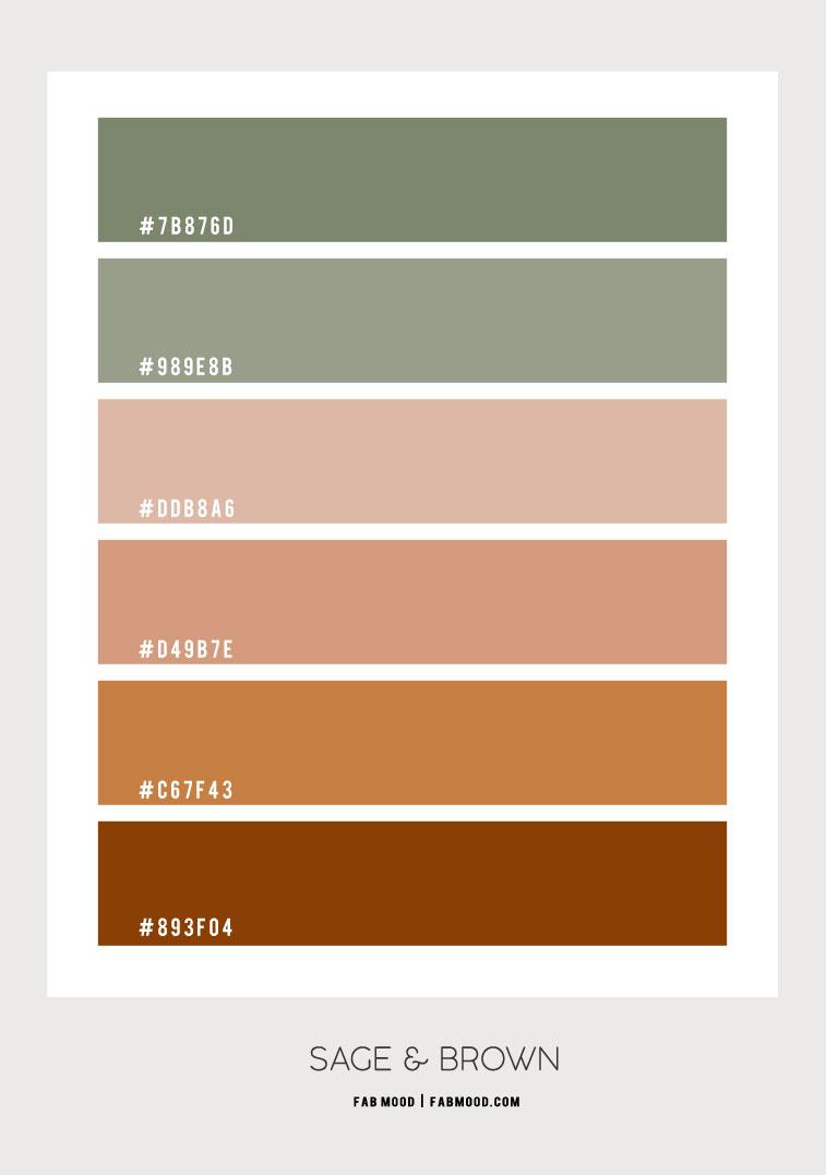 sage and brown color hex, brown and sage, sage brown, brown and sage color palette, brown and sage color combo, brown and sage color combination, sage and terracotta #colorpalette sage and brown color scheme