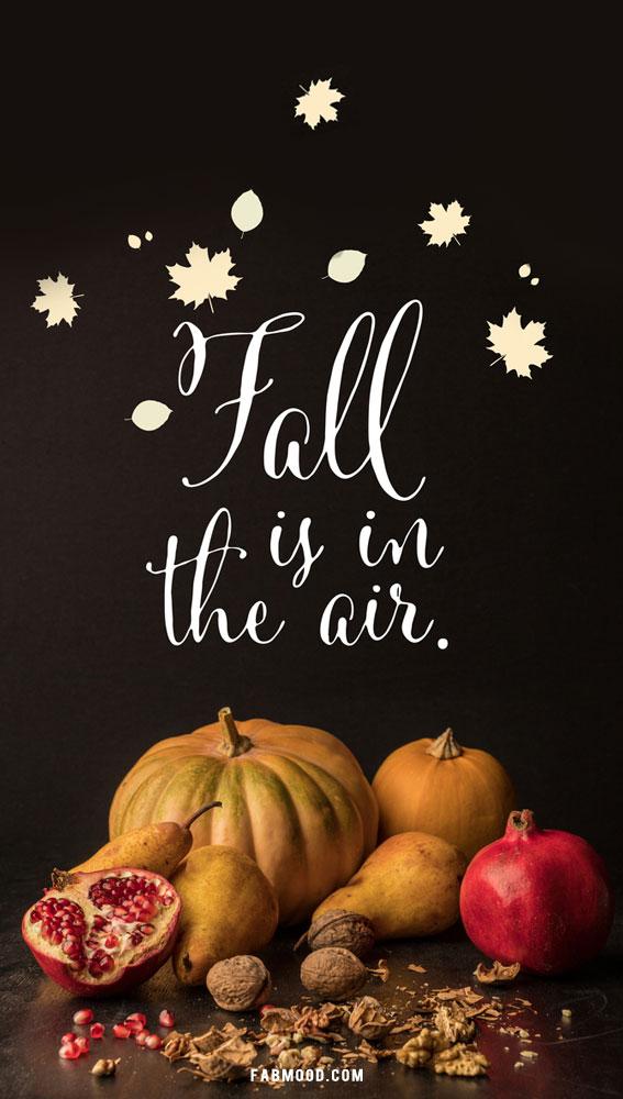 fall wallpaper, autumn wallpaper, fall phone wallpaper, screensaver fall images, autumn wallpapers 2021